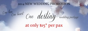 Destiny Wedding Package